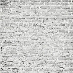Brick White Backdrop