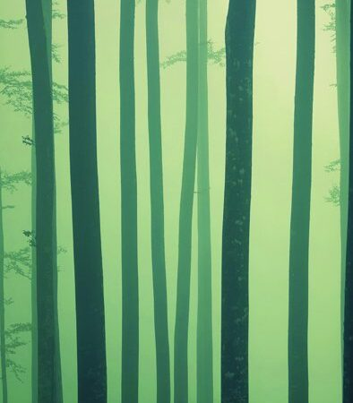 Foggy Forest Backdrop