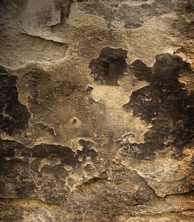 Ancient Wall Backdrop