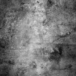 The Old Master Grey Backdrop