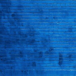 Blue Brick Backdrop
