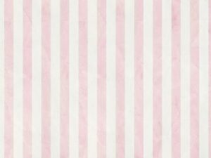 pink stripe backdrops photo