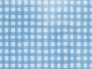 gingham blue photo backdrops