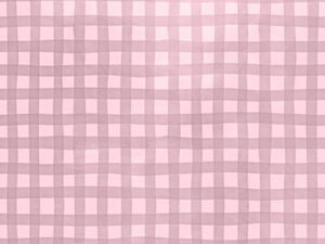 gingham pink photo backdrops