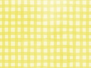 gingham yellow photo backdrops