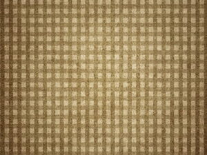 gingham brown photo backdrops