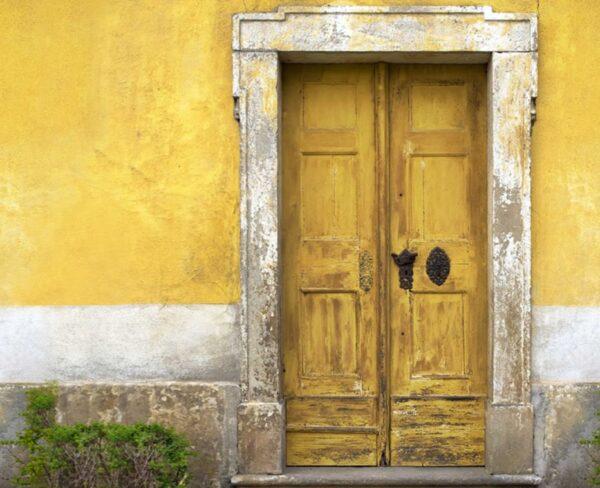 yellow door backdrops photo
