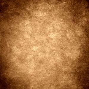 Rembrandt Brown backdrops photo