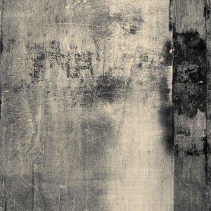 ancient wood photo backdrops