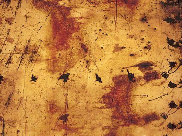 stone orange backdrops photo