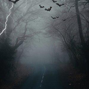 Halloween Road  Backdrop
