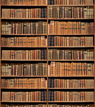 Bookshelf Custom