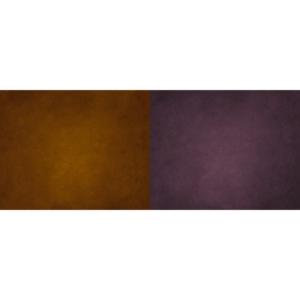 DuoFlat Amber & Amethyst